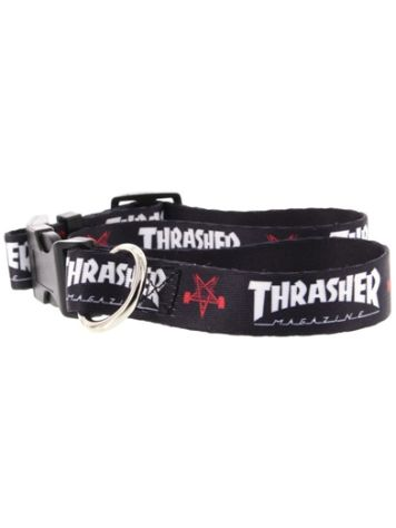 Thrasher Dog Collar Large