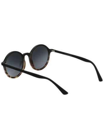 95c647fc9afc Buy Komono Madison Matte Black Tortoise online at Blue Tomato