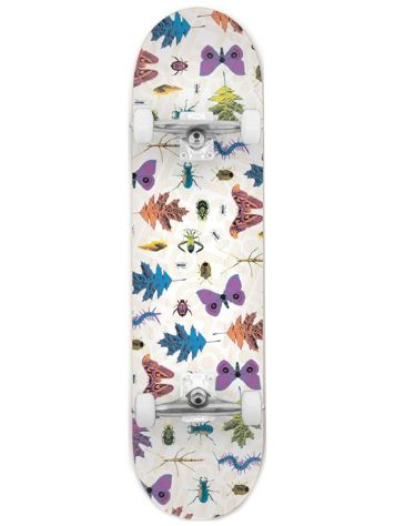 "Habitat Insecta Complete 7.75"" Skate Deck"