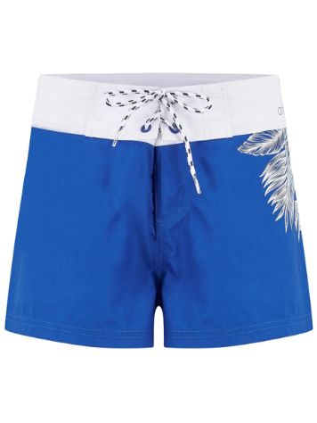 Animal Fianno Boardshorts