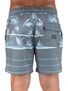 "Currumbin Lb 16"" Boardshorts"