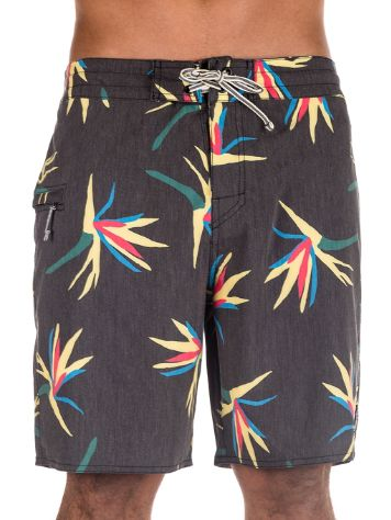 Captain Fin Jungle Jam Boardshorts