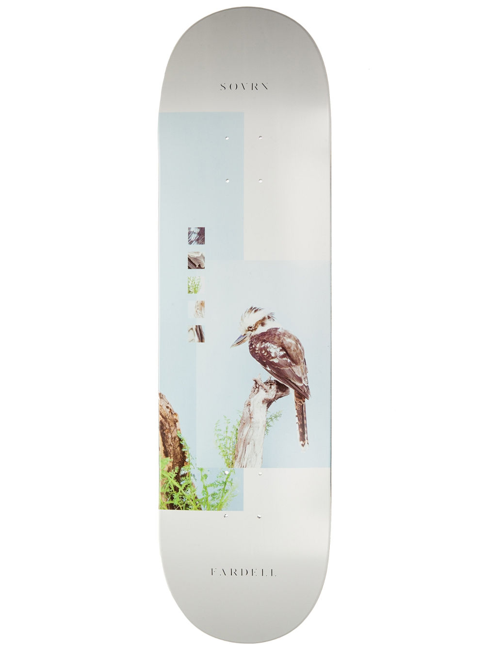 "7th Division - Fardell 8.5"" Skate Deck"