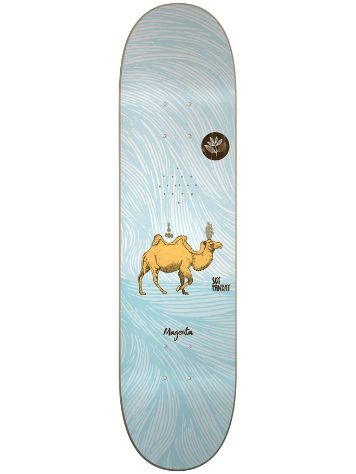 Magenta Soy Panday M 8.0'' Skate Deck