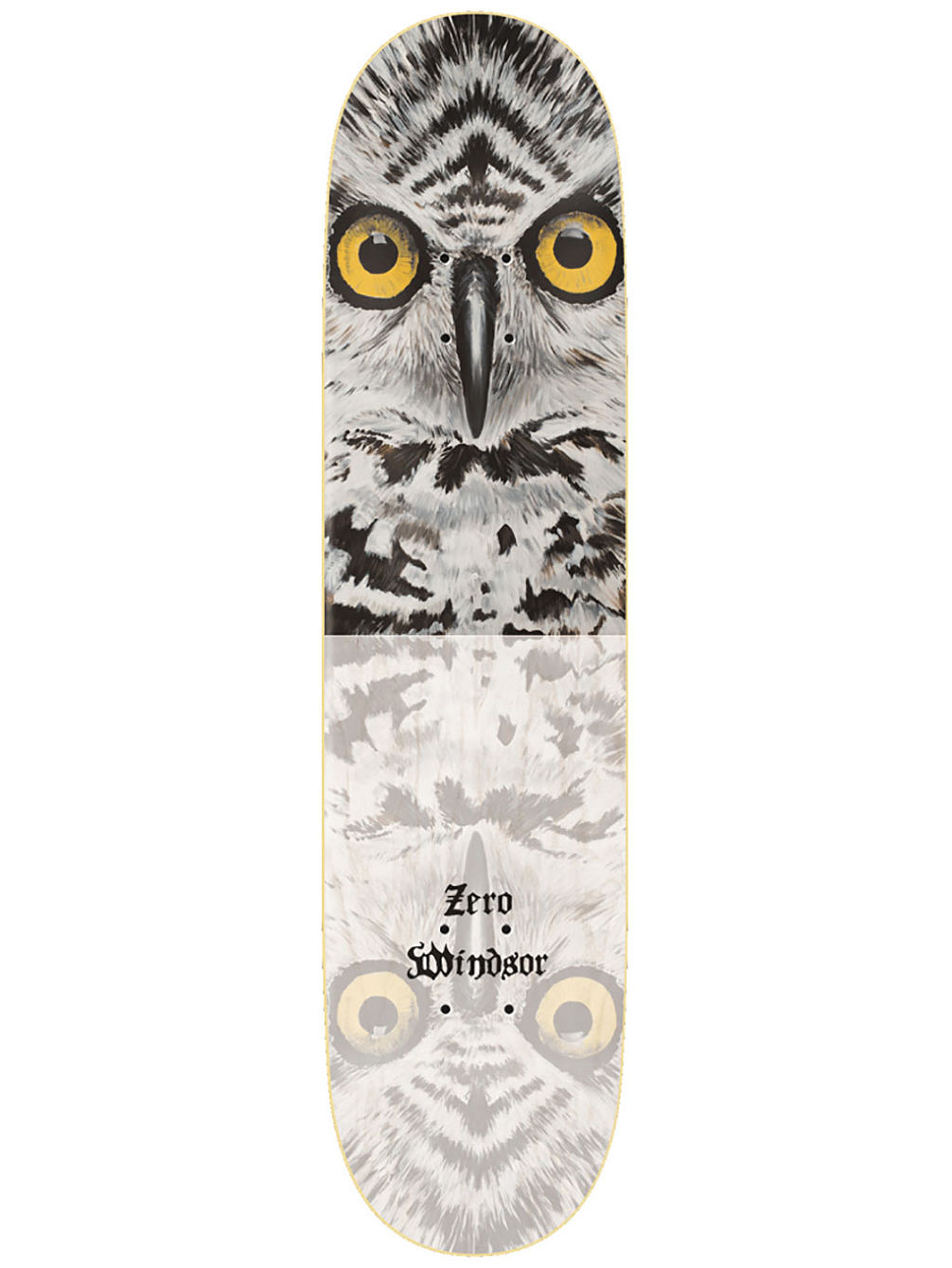 "Windsor Owl Impact Light 8.375"" Skate Deck"