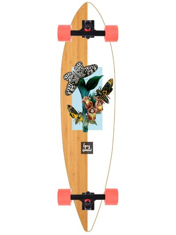 "Long Island Longboards Nature 38"" Pintail Li Complete"
