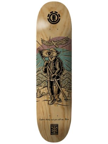 "Element Timber Explorer 8.2"" Skate Deck"