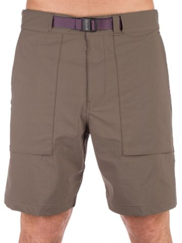 Nike SB Flx Everett Shorts