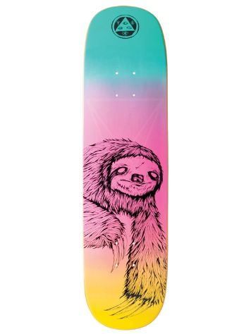 Welcome Sloth On Amulet 8.125'' Skateboard Deck