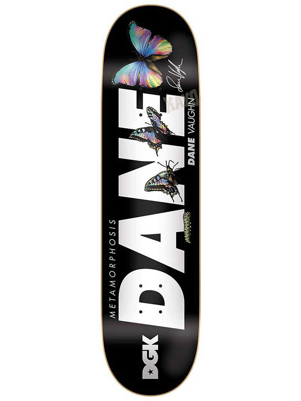 Dane Metamorphosis 8.06' Skateboard Deck