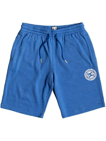 DC Rebel Short Pants