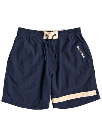 Quiksilver Water Driven Shorts