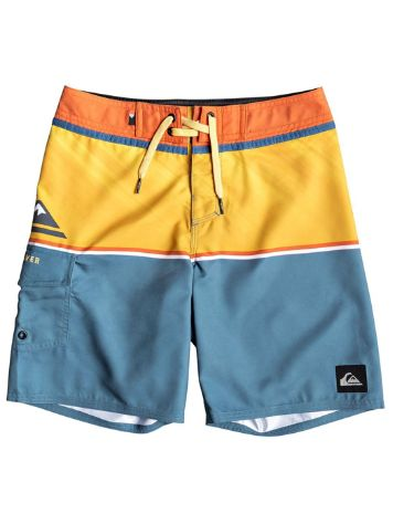Quiksilver Everyday Division 16'' Boardshorts