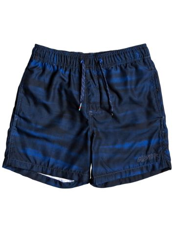 Quiksilver Acid Volley 14'' Boardshorts