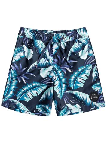 Quiksilver Poolsider Volley 15'' Boardshorts