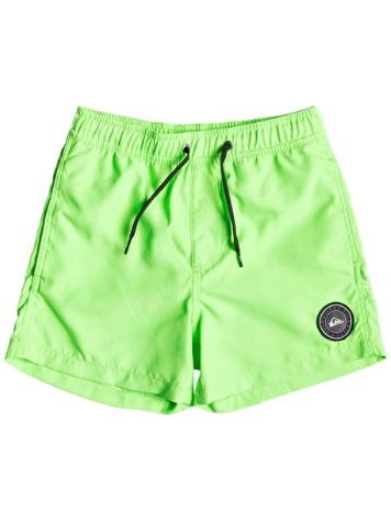Quiksilver Everyday Volley 13'' Boardshorts