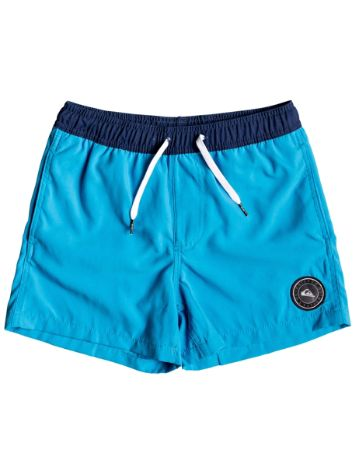 Quiksilver Glitch Volley 13'' Boardshorts