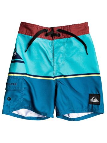 Quiksilver Everyday Division 12'' Boardshorts
