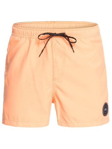 Quiksilver Everyday Volley 15'' Boardshorts