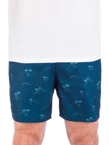 Billabong Sundays Layback Shorts