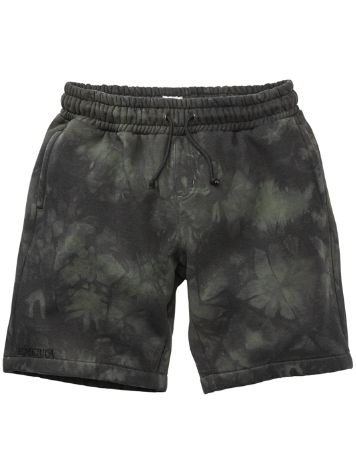 Emerica Blur Fleece Shorts