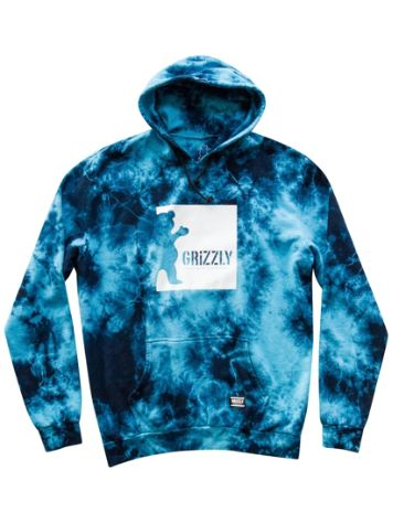 Grizzly Deep Water Sudadera con capucha
