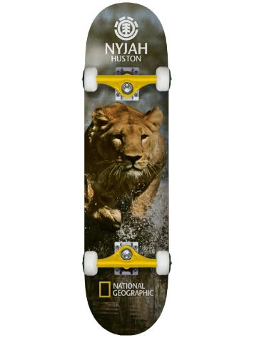 "Element Nat Geo Nyjah Lion 7.75"" Complete"