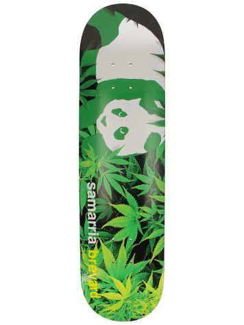 "Enjoi Pro Panda Louie Barletta 8.0"" Skateboard Dec"