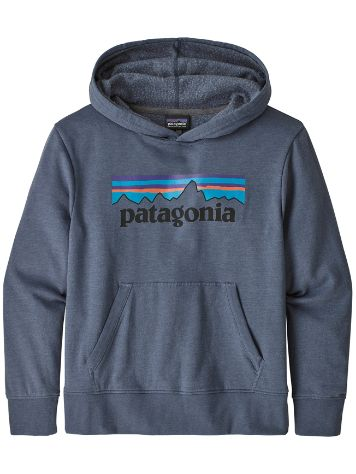 Patagonia LW Graphic Sweat à Capuche