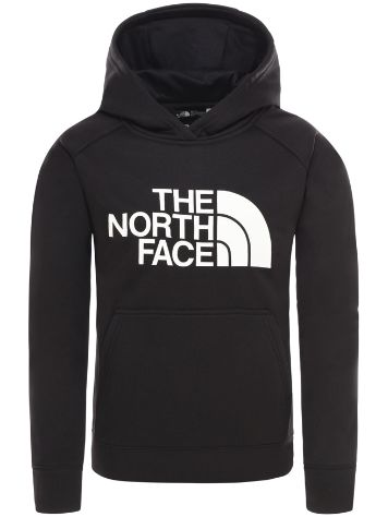 THE NORTH FACE Surgent Hooded Fleece Pullover
