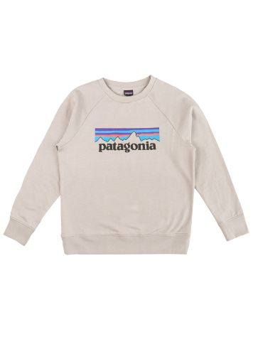 Patagonia Lw Crew Pulover
