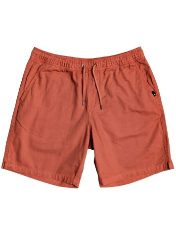Quiksilver Brain Washed Shorts
