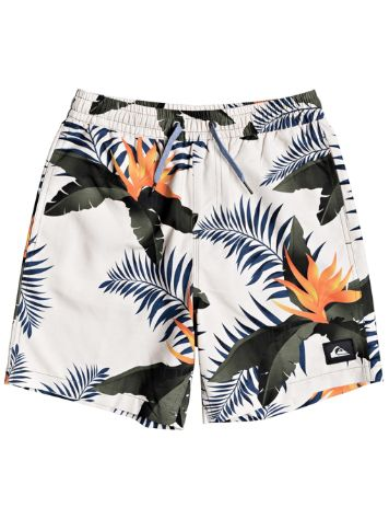 Quiksilver Poolsider Volley 15 Boardshorts