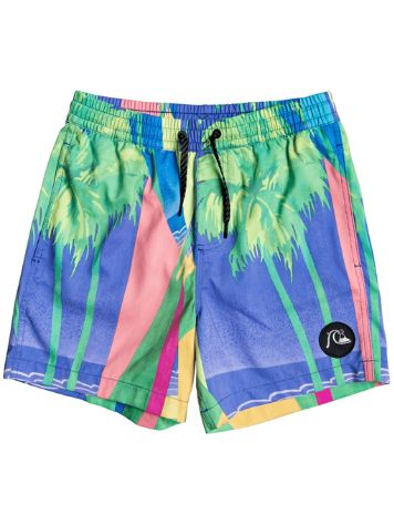 Quiksilver No Destination Volley 14 Boardshorts