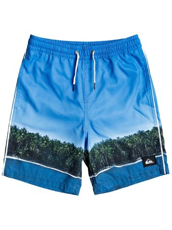Quiksilver Jetlag Dreams Volley 15 Boardshorts