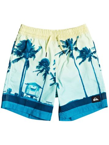 Quiksilver Paradise Volley 15 Boardshorts