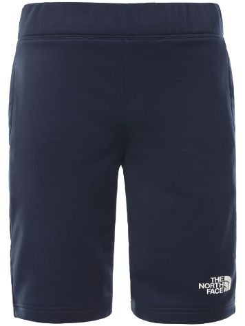 THE NORTH FACE Surgent Shorts