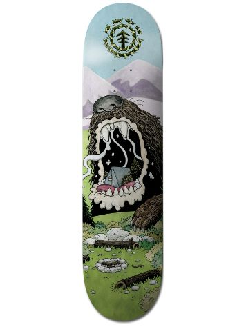 "Element Nature Wins Bears 8.25"" Skateboard Deck"