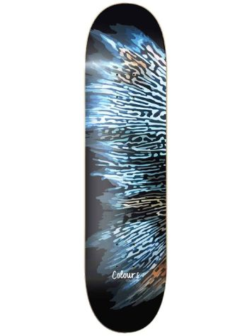 "Colours X Footprint Fish 8.25"" Skateboard Deck"