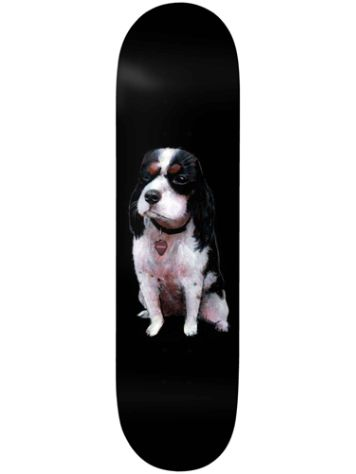 "Deathwish Lizard Shredder 8.0"" Skateboard Deck"