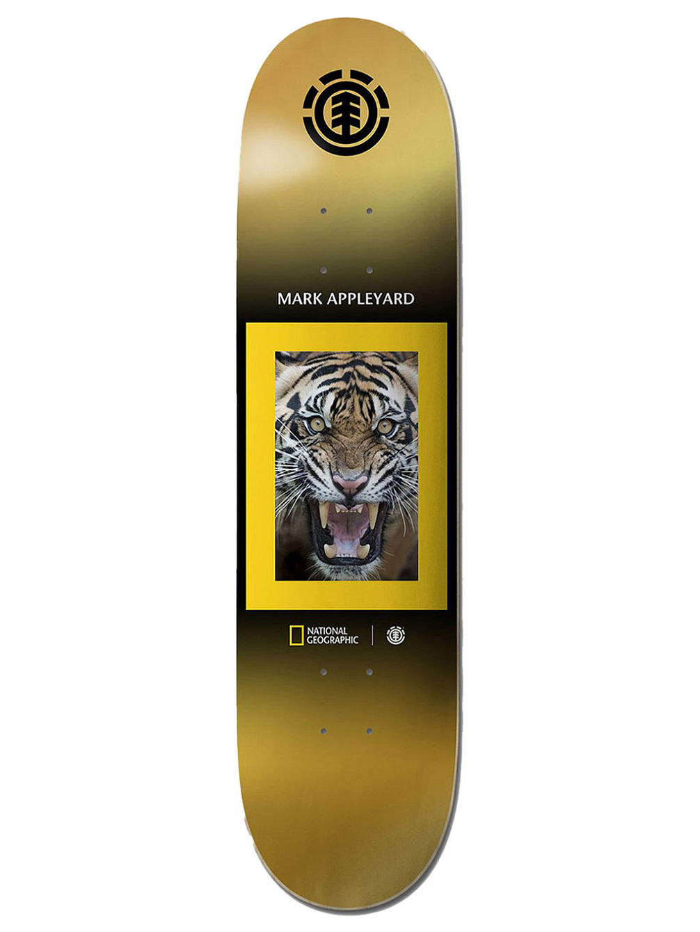 "Nat Geo Kings Appleyard 8.25"" Skateboard Deck"