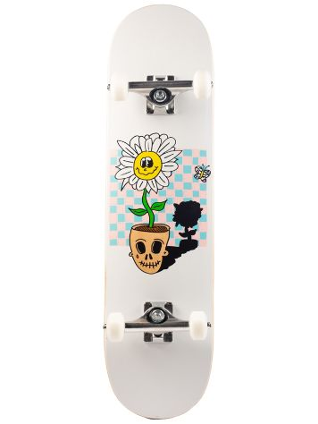 "Eh-Ok Life And Death 8"" Skateboard deck"