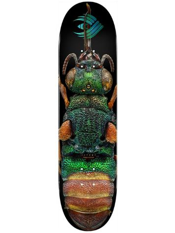 "Powell Peralta Biss Flight 244 Ruby Tailed Wasp 8.5"" Skateb"