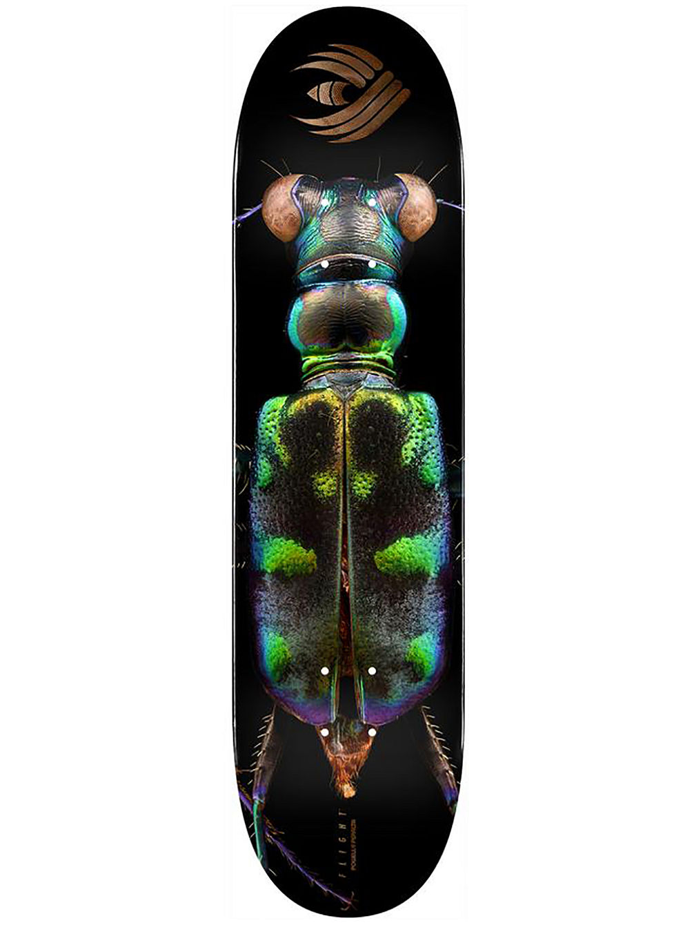 "Biss Flight 248 Tiger Beetle 8.25"" Skateboard Deck"