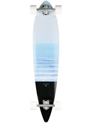 "Quiksilver Palmtree 40"" Complete"