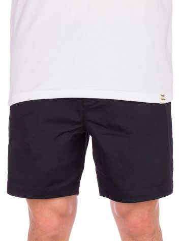 Nike SB Pull On Chino Shorts