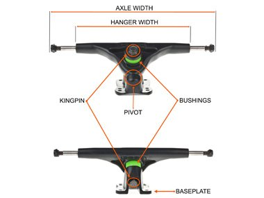 Skateboard truck components explained