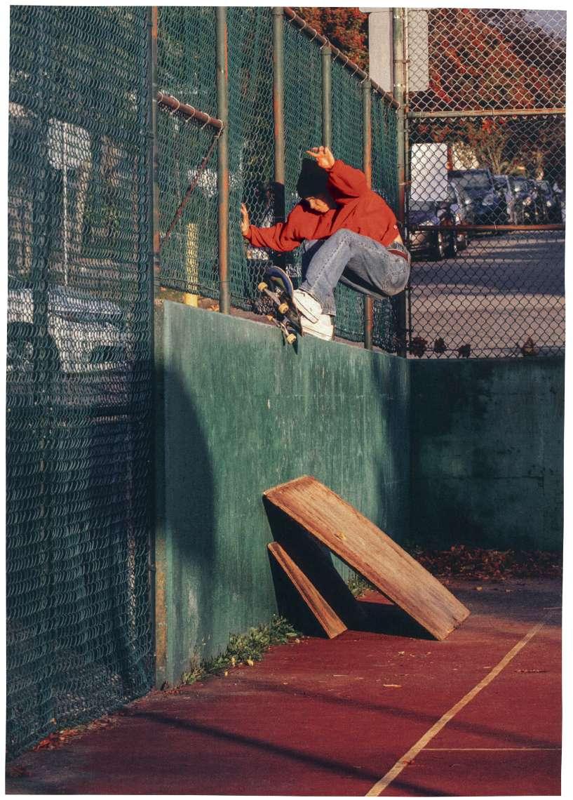 Dustin Henry x Skate OldSkool