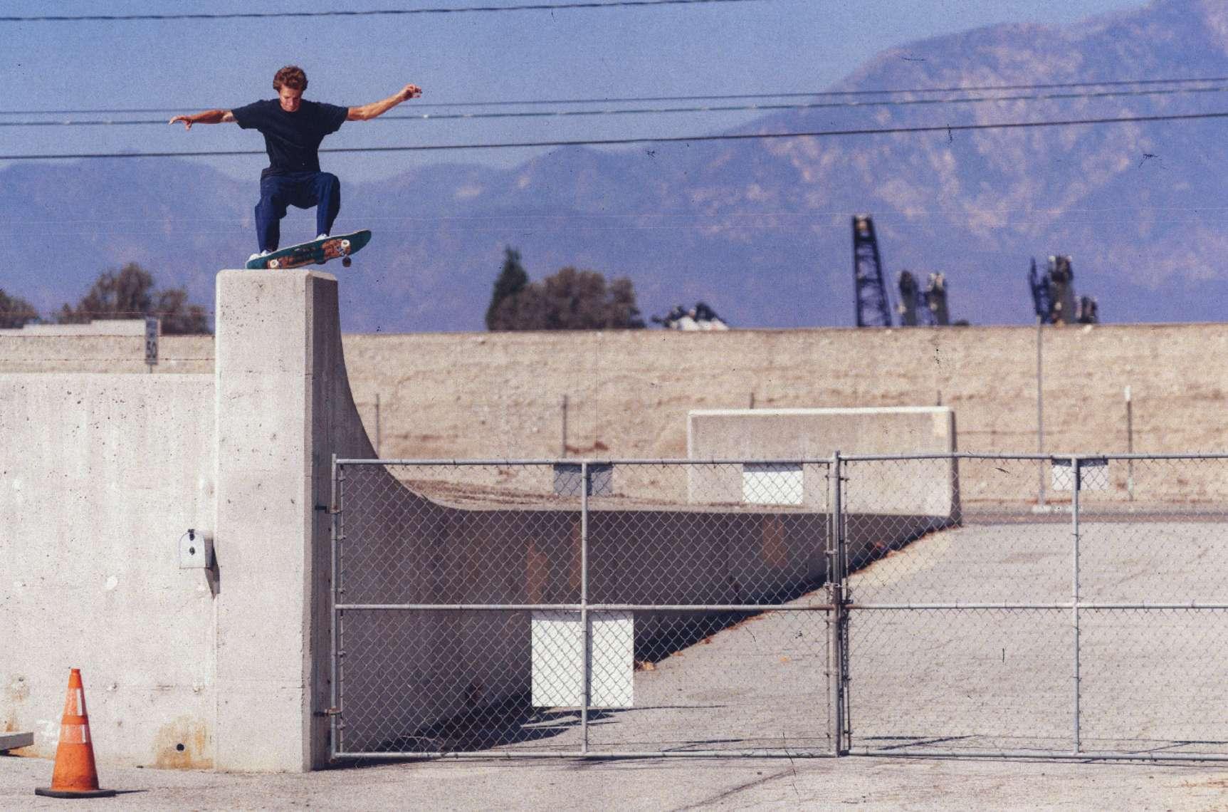 Axel Cruysberghs x Skate Sk8-Hi